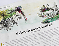 Editorial Illustration - Casa e Jardim