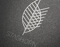 Staghorn NYC Logo Branding and Web