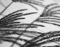 Ilustração de paisagem - Landscape Illustration