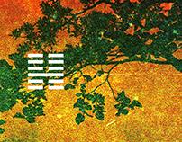"12"" & CD Design for T2X (2010-2015)"