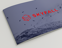 Skyfall ventures
