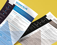 Free Resume Template with Premium Quality Design