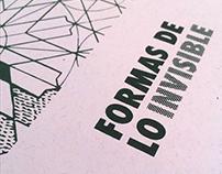 Publicación para Formas de lo invisible