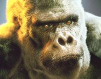 Bob the gorilla (free download)