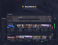 Blackbird AI – UI Kit Design for Dashboard