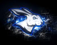 Arctic Dash | Sports Logo + Branding