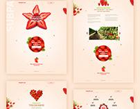 Strawberry Farm website concept