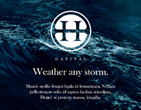 H Capital Investment Firm: Corporate Identity