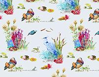 Wallpaper: The Mandarin Duck