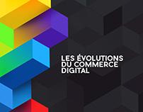 RPF 2016 - Les Évolutions du Commerce Digital