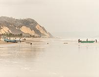 'Fresh Off The Beach'