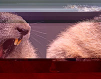 Glitch Beaver