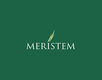 Meristem Securities