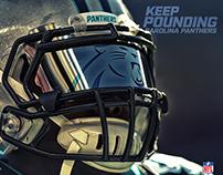 Carolina Panthers Info Graphics