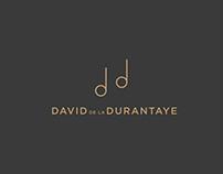 Logo/Branding David de la Durantaye artiste musicien