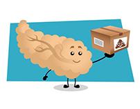 Pancreas Explainer video
