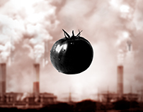 POLLUTION EATING