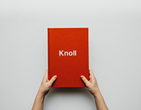 Annual Report - Knoll