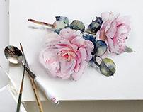 Watercolor sketchbook from my Instagram :)