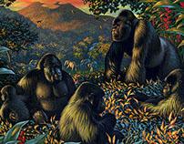 Anne Sharp - Animals in their habitats