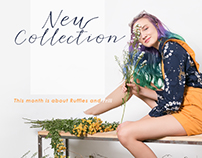 COLORBOX // Banner // New Collection