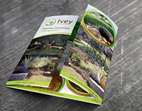 Ivey Landscaping