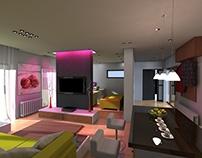 Small Contemporary Interior