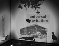 Universal Gravitaion