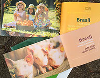 Brasil - One country Many Flavours