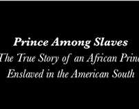 """Prince Among Slaves"" Film Screening"