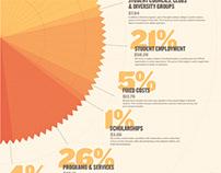 Budget Breakdown: Infographic
