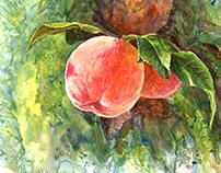 Sunny Peaches