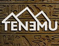Tenemu - Naming, Logo, Branding
