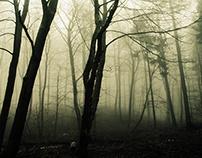 Mistic Landscapes