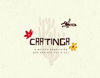 Estampa - Coleção Caatinga