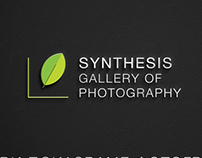 Gallery Synthesis