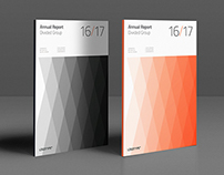 Divided Annual Report
