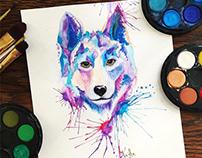 Wolf - 2018