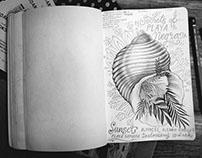 CostaRica diary
