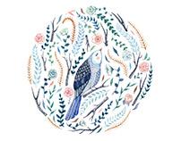 'Free as a Bird'
