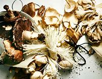 Mushroom Love Story