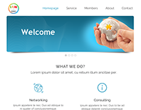 Business website design for CBAI