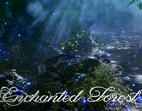 Enchanted Forest