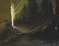 """""""Landscapes"""" 2013"""