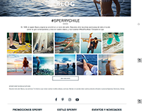 Sitio web  - Sperry Chile