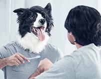 Pro Sense Pet Health + BTS