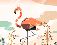 Flamingo in the Salinas