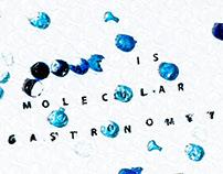 What's Molecular Gastronomy?