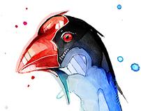 Watercolour Pukeko