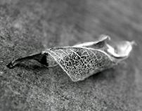 ...leaf....
